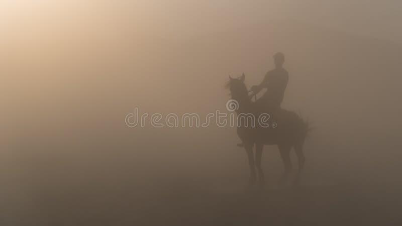 Mann auf einem Pferdeschattenbild, das im Staub steht lizenzfreies stockfoto