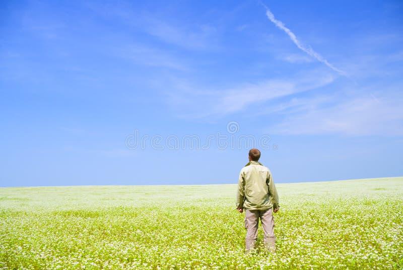 Mann auf grüner Wiese. lizenzfreie stockfotografie