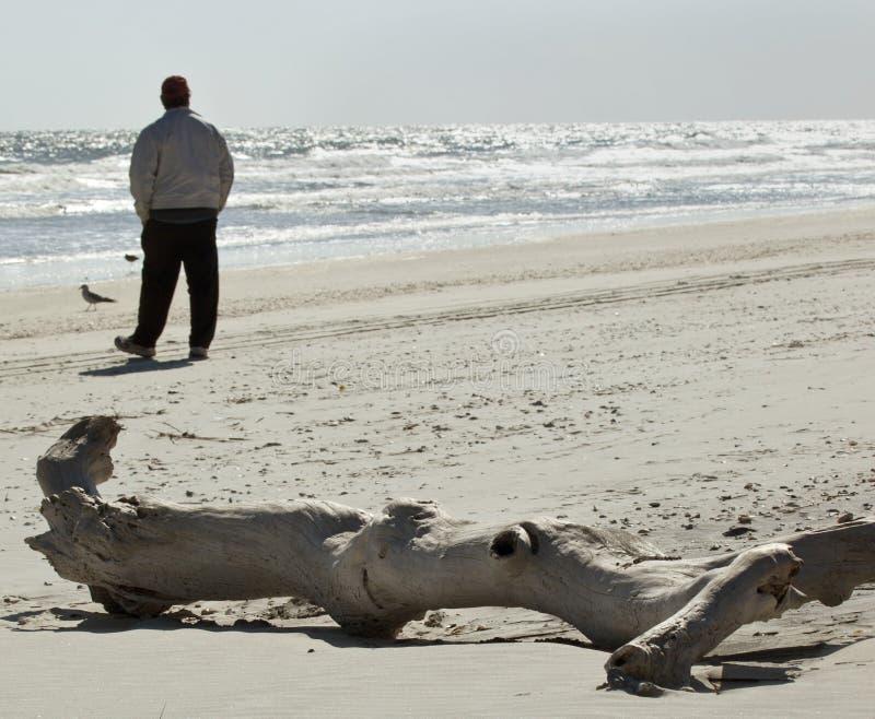 Mann auf Strand durch versteinertes Protokoll stockfoto