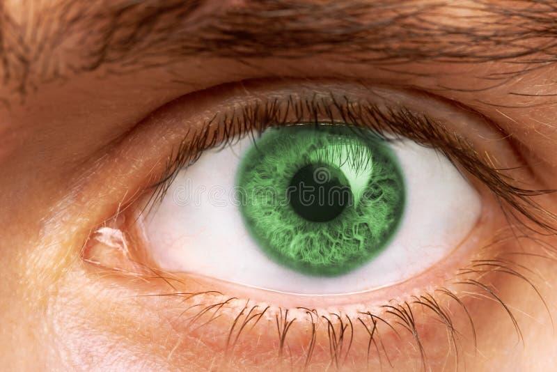 Mann-Augen lizenzfreie stockfotografie