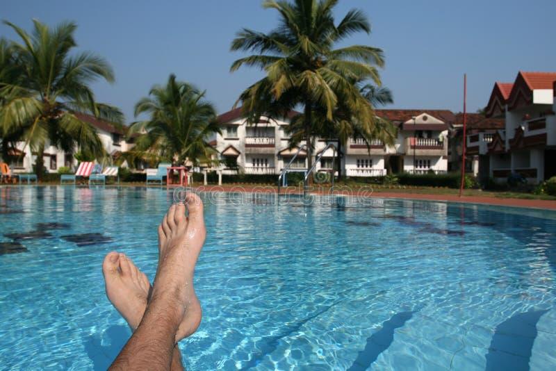 Mann bezahlt und Swimmingpool stockbild