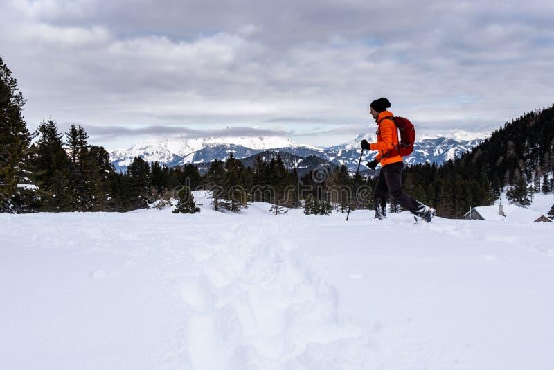 Mann, der auf Scheibelalm in Hohentauern-Ansicht zu Ennstaler-Alpen snowshoeing ist stockfoto