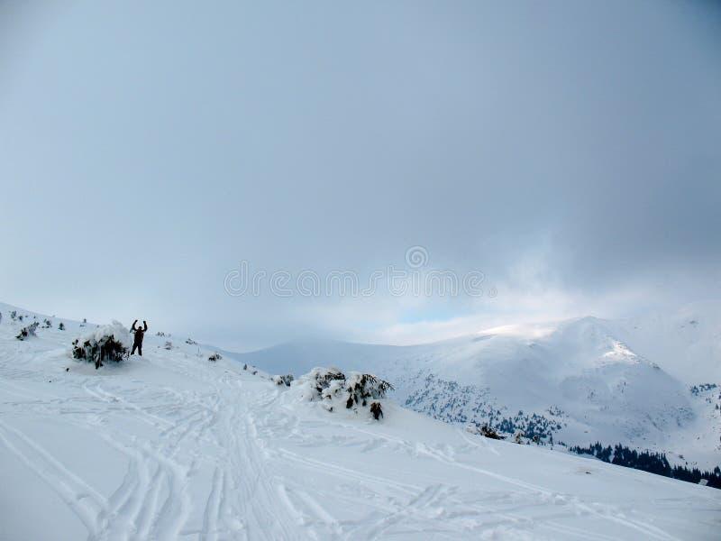 Mann, der auf weiße Steigung nahe eisigem verbogenem Baum wellenartig bewegt Steigungsspur und entfernter schneebedeckter Gebirgs lizenzfreies stockbild