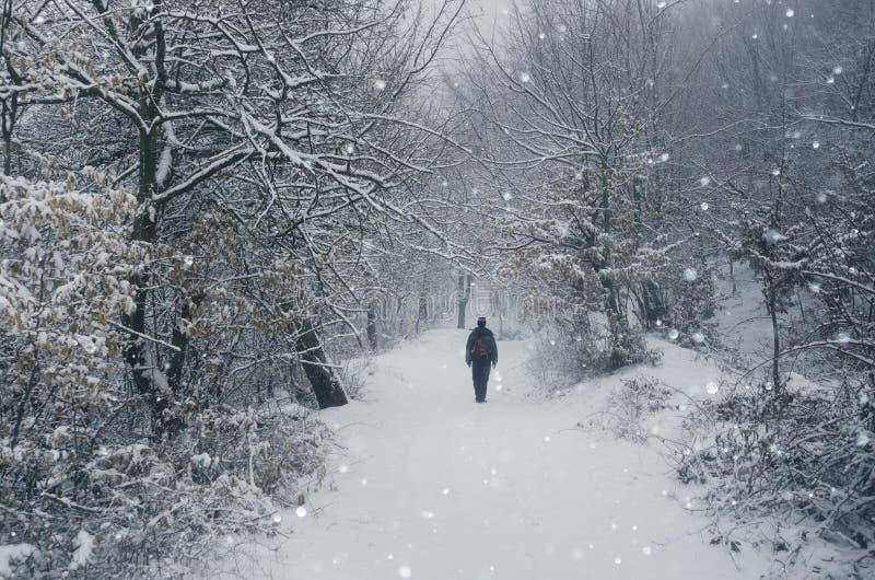 Mann, der in den Schnee geht lizenzfreies stockfoto