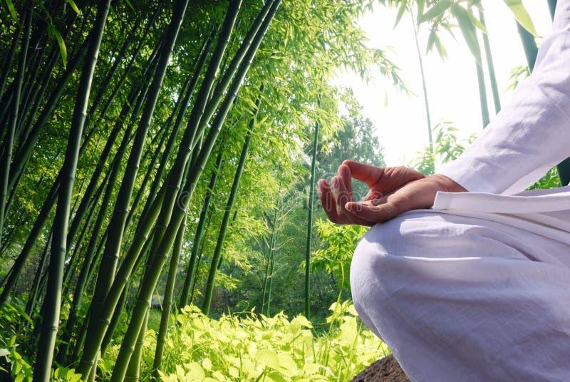 Mann, der durch Bambuswald sich entspannt lizenzfreie stockfotos