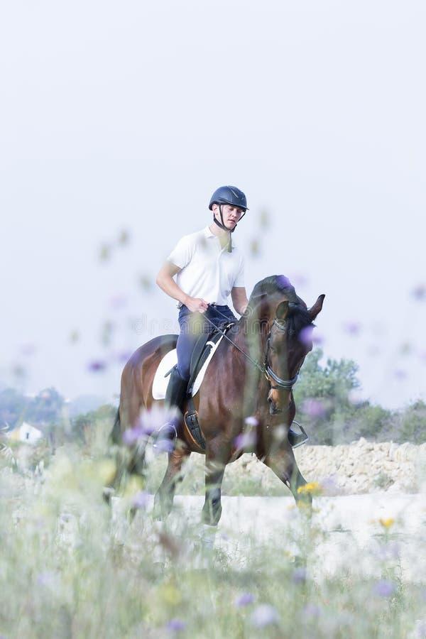 Mann, der ein Pferd reitet lizenzfreie stockfotos
