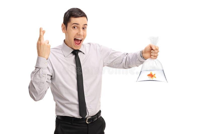 Mann, der einen Goldfisch hält und Finger kreuzt stockfoto