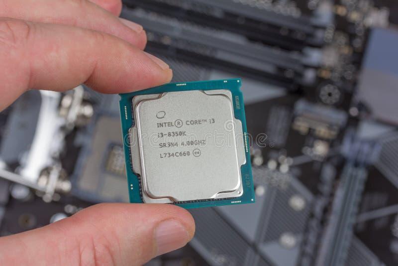 Mann, der 8. GEN des Tischplattenprozessors Fingerintel-Kernes I3 auf Hintergrundmotherboardnahaufnahme hält stockbild