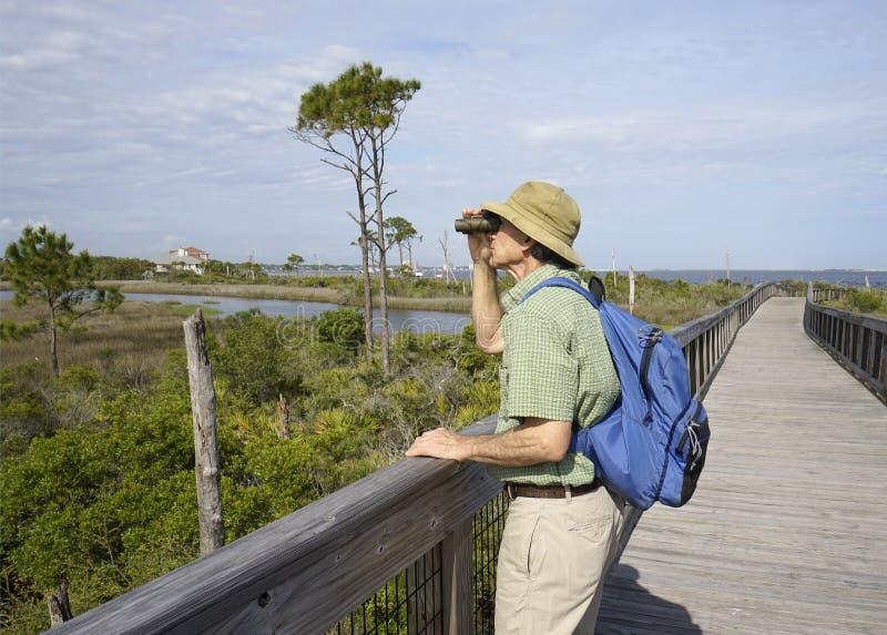 Mann, der am großen Lagunen-Nationalpark in Florida Birdwatching ist lizenzfreie stockfotos