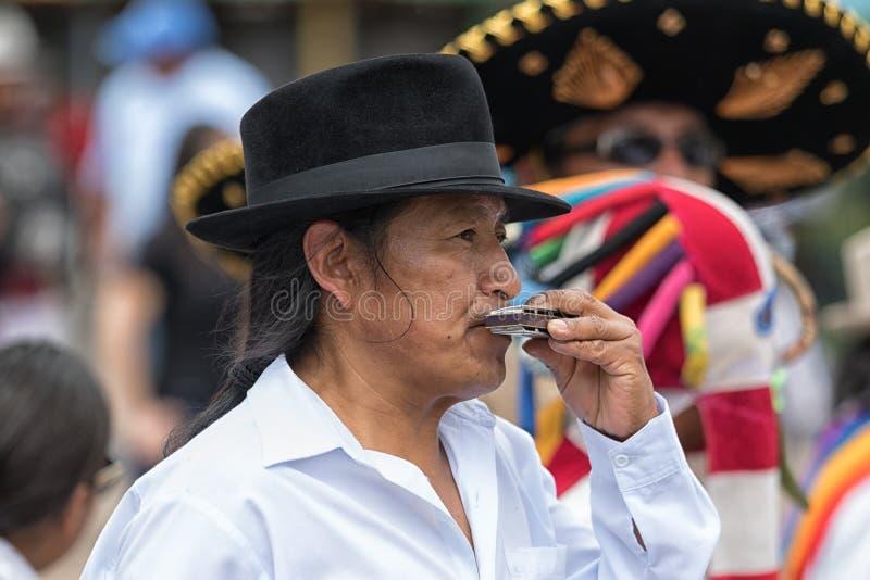 Mann, der Harmonika in der Straße spielt stockfotos
