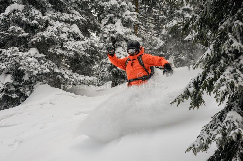 Mann, der hinunter den Hügel zwischen die Bäume lassen Schnee reitet zu spritzen lizenzfreie stockfotografie