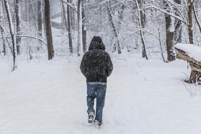 Mann, der hinunter Snowy Forest Trail geht stockbilder