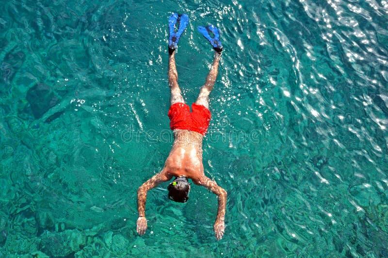 Mann, der im Meer schnorchelt stockfotografie