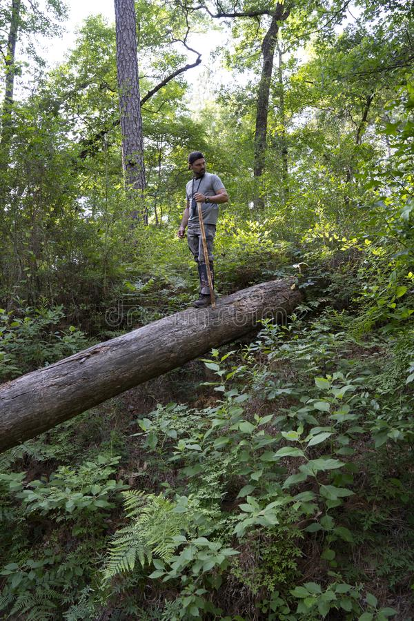 Mann, der im Nations-Wald wandert lizenzfreies stockfoto