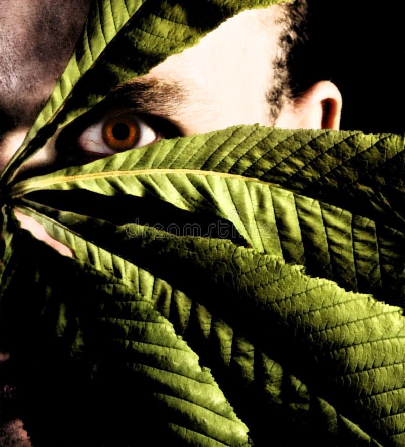 Mann, der mit Blättern sich versteckt. lizenzfreie stockfotos