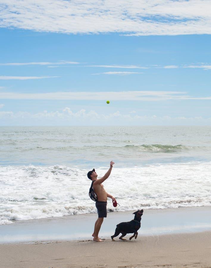 Mann, der mit Hund, Bali spielt stockbild