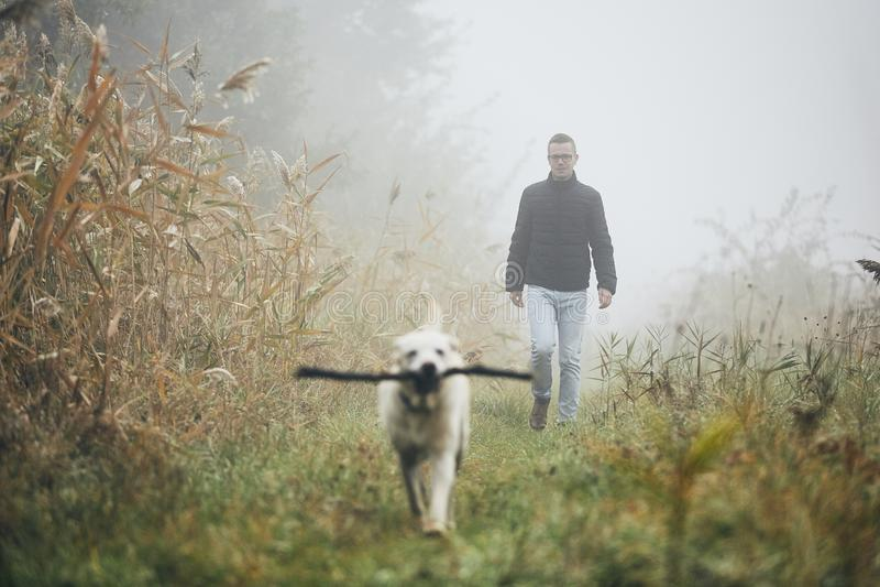 Mann, der mit Hund im Herbstnebel geht stockbilder