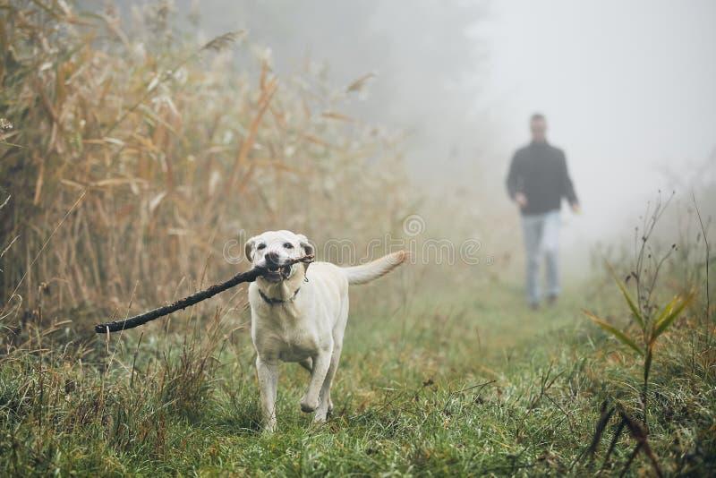 Mann, der mit Hund im Herbstnebel geht stockfoto