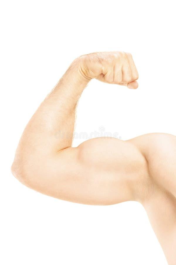 Mann, der seine Armmuskeln zeigt stockfotografie