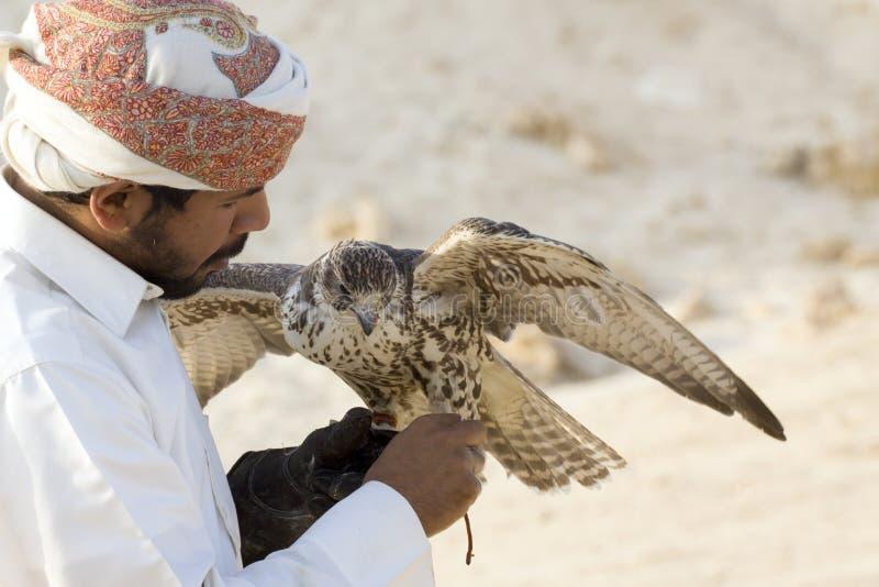 Mann, der seinen Falken vor der Anwendung er, um Vögel zu jagen hält stockbild