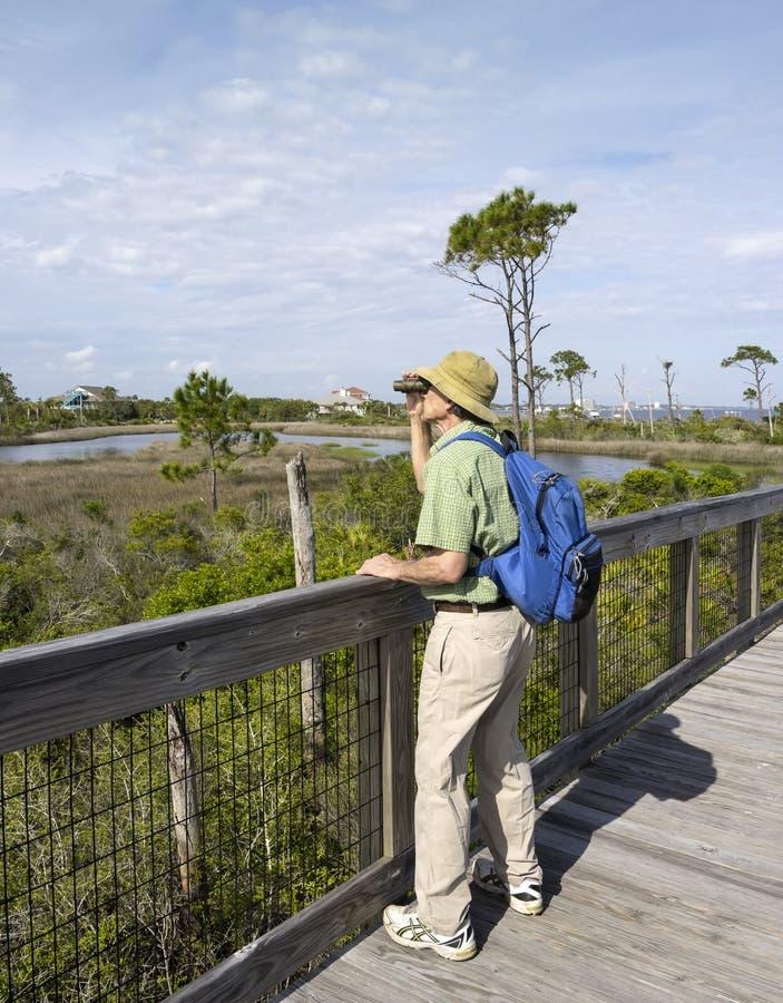 Mann, der am Staat Florida-Park Birdwatching ist lizenzfreies stockfoto