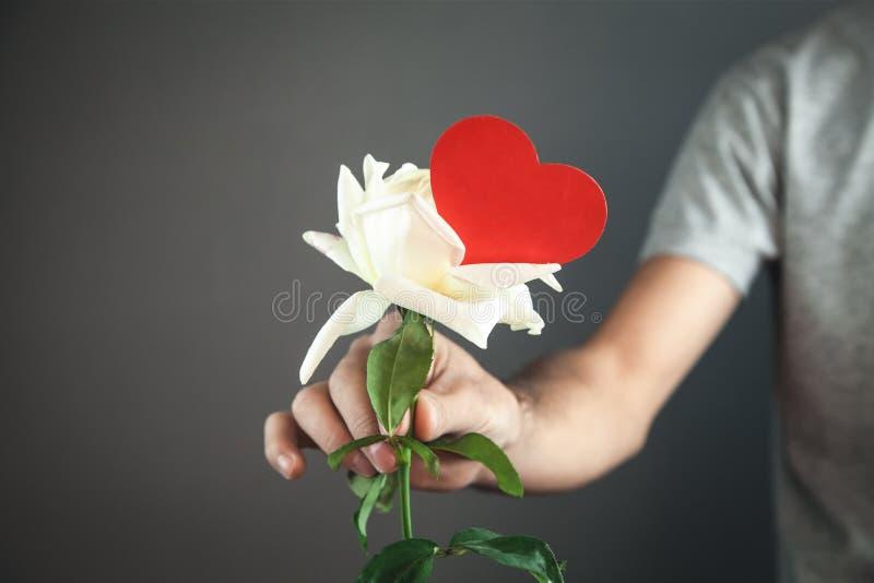 Mann, der weiße Rose mit rotem Herzen gibt stockbild