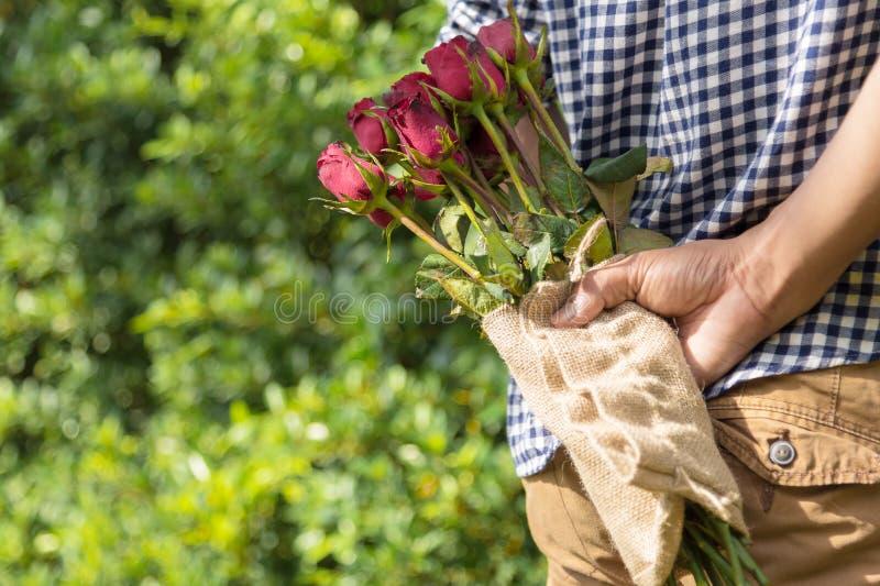 Mann, der zurück rote Rosen auf seinem für ein Geschenk oder ein Valentinsgrüße surpri versteckt lizenzfreies stockbild