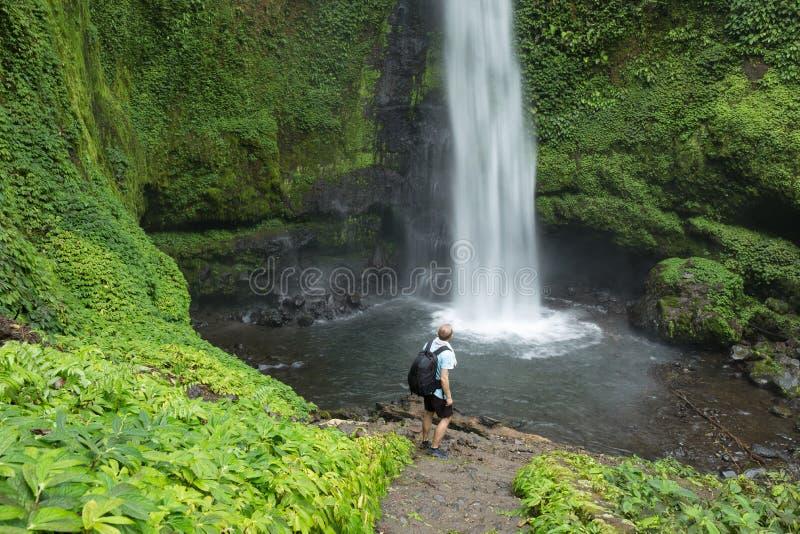 Mann durch üppigen grünen Wasserfall des tropischen Regenwaldes stockfotografie