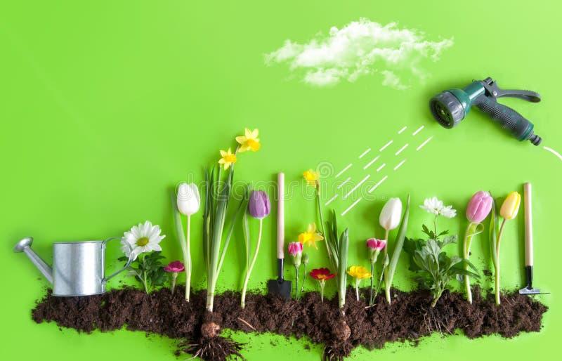 Mann erledigt Gartenarbeit stockbild