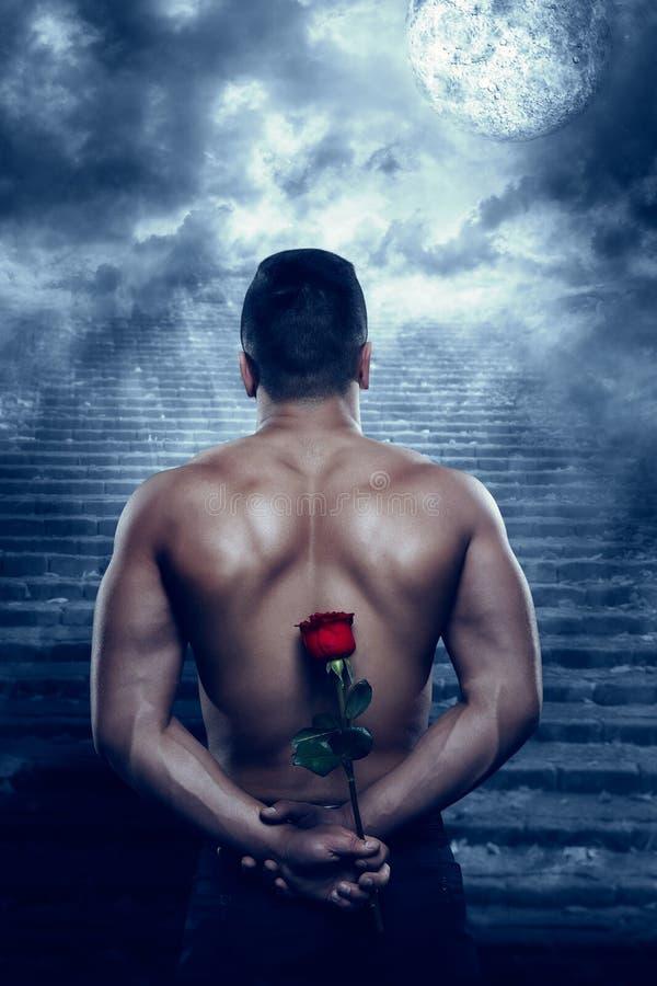 Mann-hintere hintere Ansicht mit Rose Flower Looking zum Mond in der Nacht lizenzfreie stockbilder