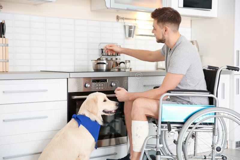 Mann im Rollstuhl kochend mit Service-Hund lizenzfreies stockfoto