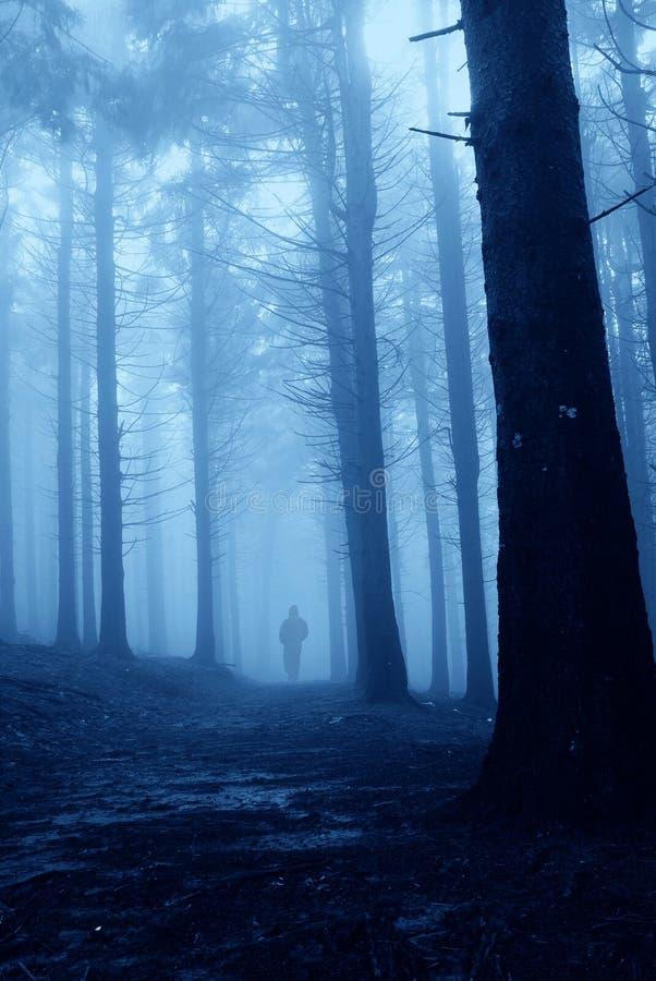 Mann im Wald lizenzfreies stockbild