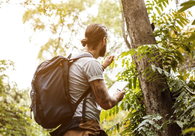 Mann im Wald allein für Trekking stockbilder