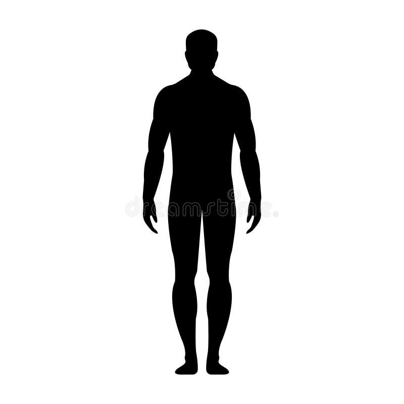 Mann Menschliches Vorderseite Schattenbild Getrennt auf weißem Hintergrund lizenzfreie abbildung