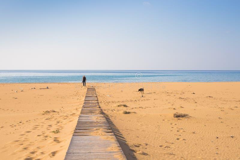 Mann mit dem Hund, der auf den hölzernen Weg auf dem Strand geht und den Abstand des Ozeans untersucht stockfotos