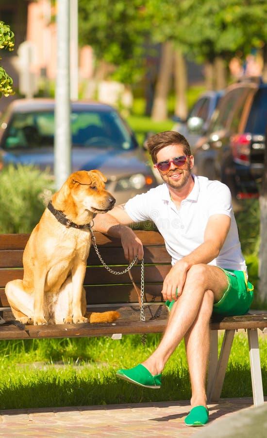 Mann mit Hund auf Bank im Park lizenzfreies stockbild