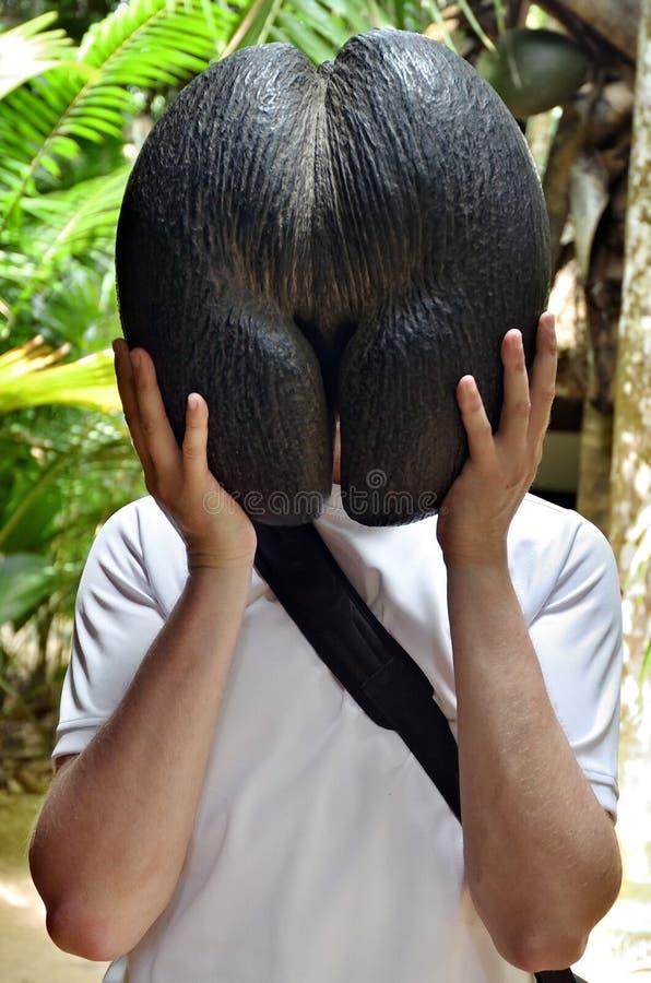 Mann mit Lodoicea oder coco de Mer seychellen lizenzfreie stockfotos