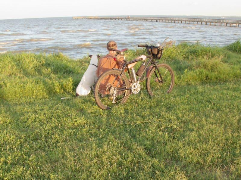 Mann mit Mountainbike und Hund lizenzfreie stockbilder