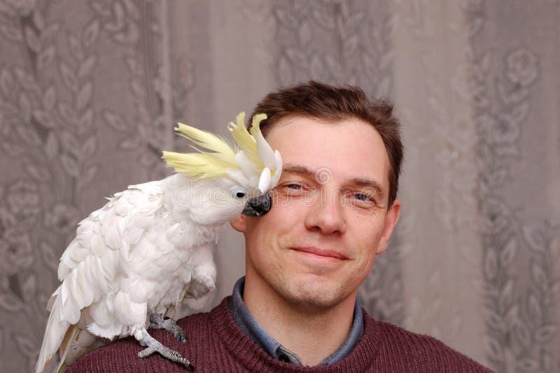 Mann mit Papageiensitzen lizenzfreies stockbild