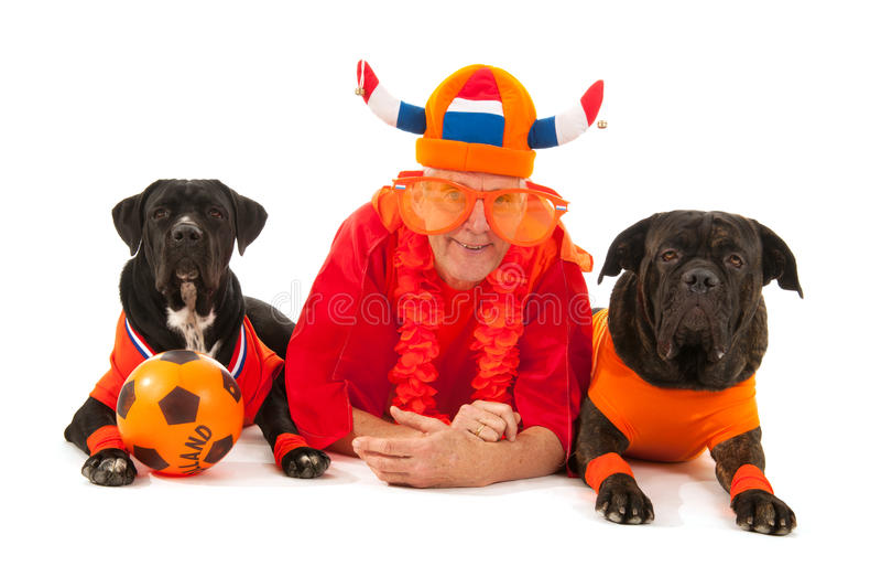 Mann mit seinen Hunden als niederländischen Fußballanhängern stockbild