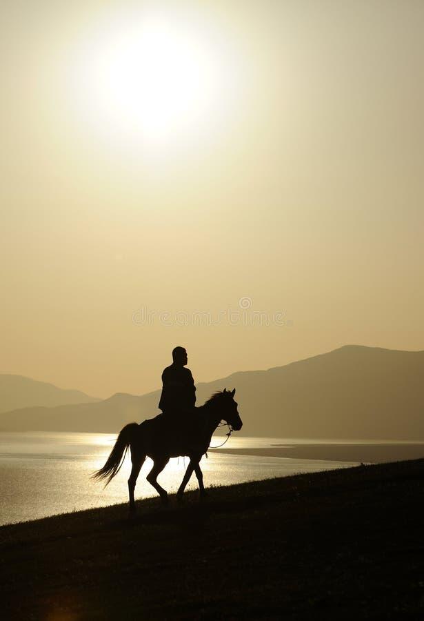 Mann ridig Pferd bei Sonnenaufgang stockbilder