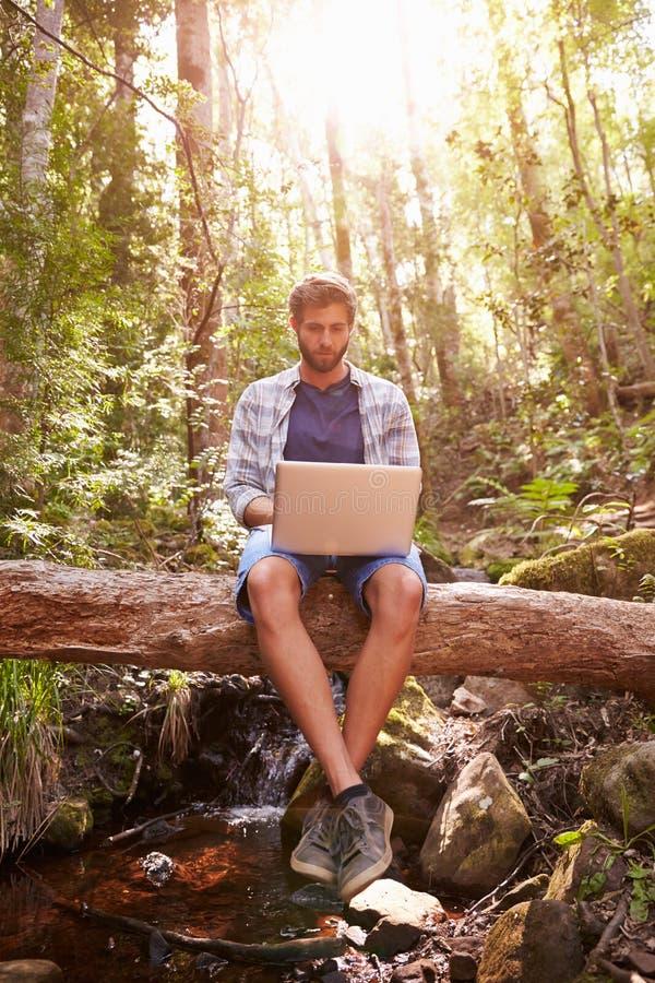 Mann sitzt auf Baum-Stamm in Forest Using Laptop Computer lizenzfreie stockfotos