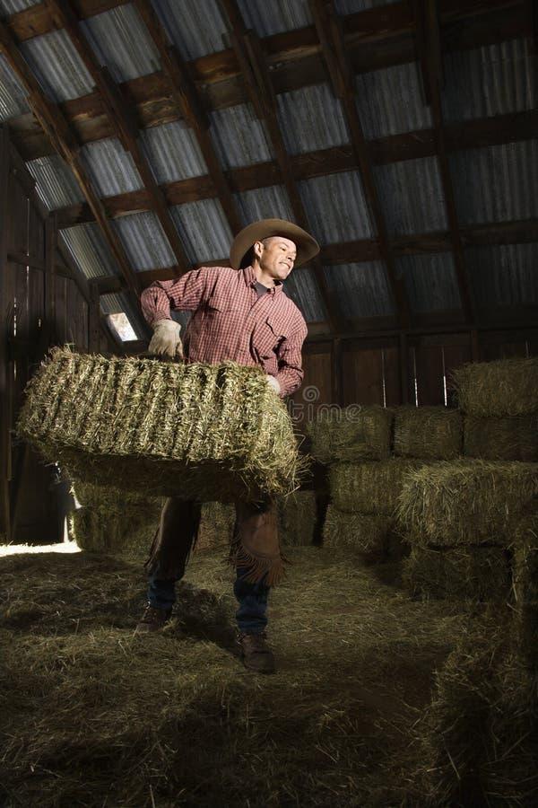 Mann in Stall-beweglichen Ballen Heu lizenzfreie stockbilder