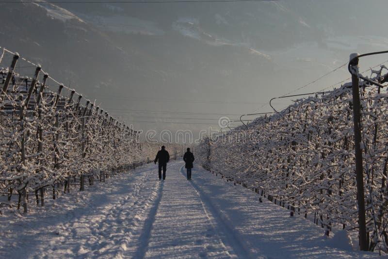 Mann und Frau, die auf den Berg zu ¼ nord Italiens SÃ dtirol gehen lizenzfreies stockbild