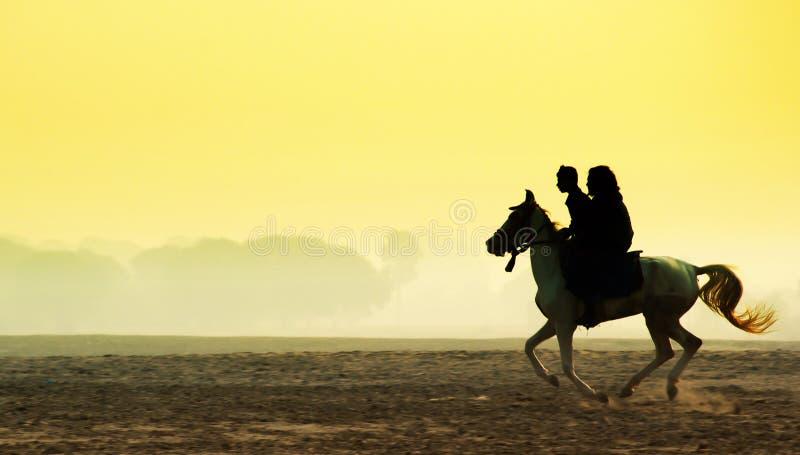 Mann Und Frau, Die Ein Pferd Reiten Stockbild - Bild von