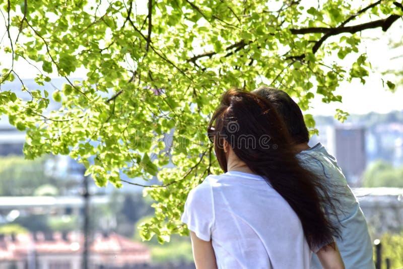 Mann und Frau unter einem Baum lizenzfreie stockfotos
