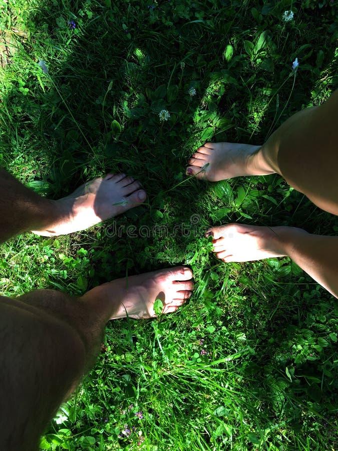 Mann- und Frauenbeine auf Draufsicht des sauberen Grases lizenzfreie stockfotos