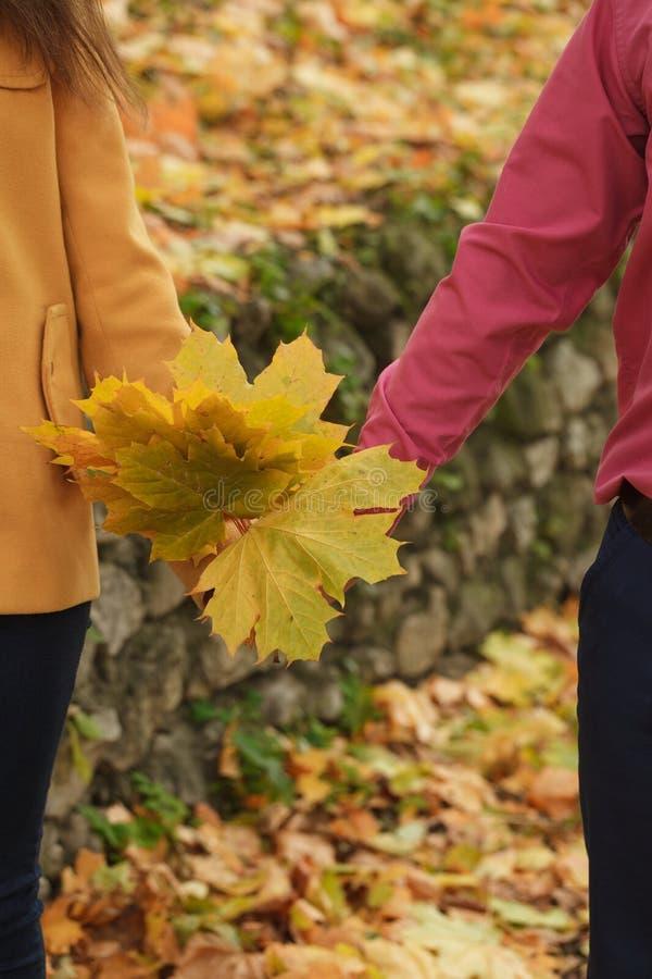 Mann- und Frauenholdinghände Gelbe Ahornblätter des Herbstes in den Händen lizenzfreies stockbild