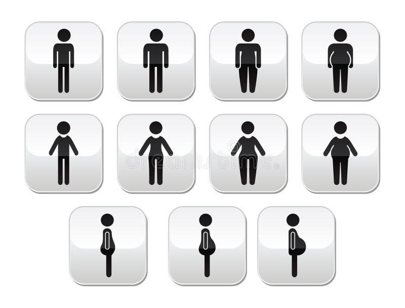 Mann- und FrauenKörperbau Knöpfe - dünn, fett, beleibt, dünn lizenzfreie abbildung