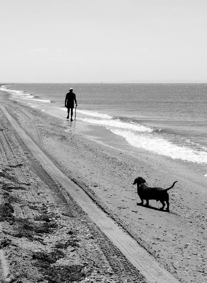 Mann und Hund auf dem Strand lizenzfreie stockfotografie